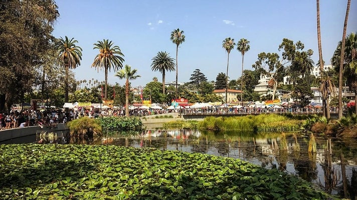 Lotus Festival at Echo Park Lake