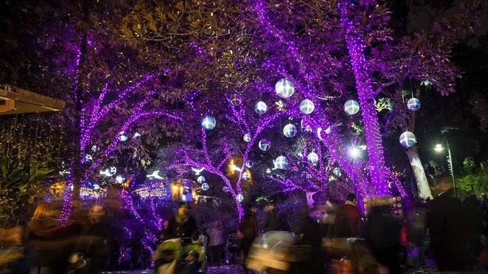 Disco Ball Forest at L.A. Zoo Lights