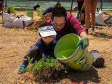 Tree planting with TreePeople