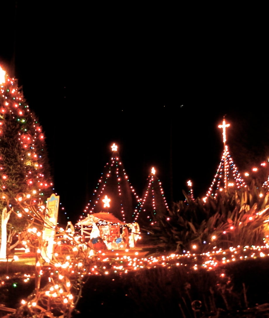 Christmas Tree Lane.Christmas Tree Lane Discover Los Angeles California