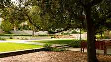 """Southern end of the Central Quadrangle at Occidental College from """"Clueless"""""""