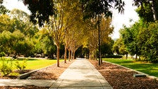 Walkway to the Booth Music and Speech Center at Occidental College