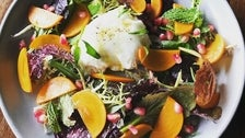 Persimmon and burrata salad at Good Measure
