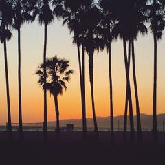L.A. beach hazy sunset